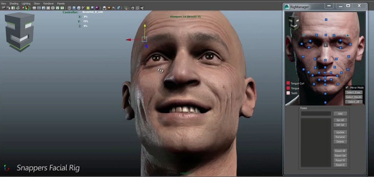 Snappers Facial Rig