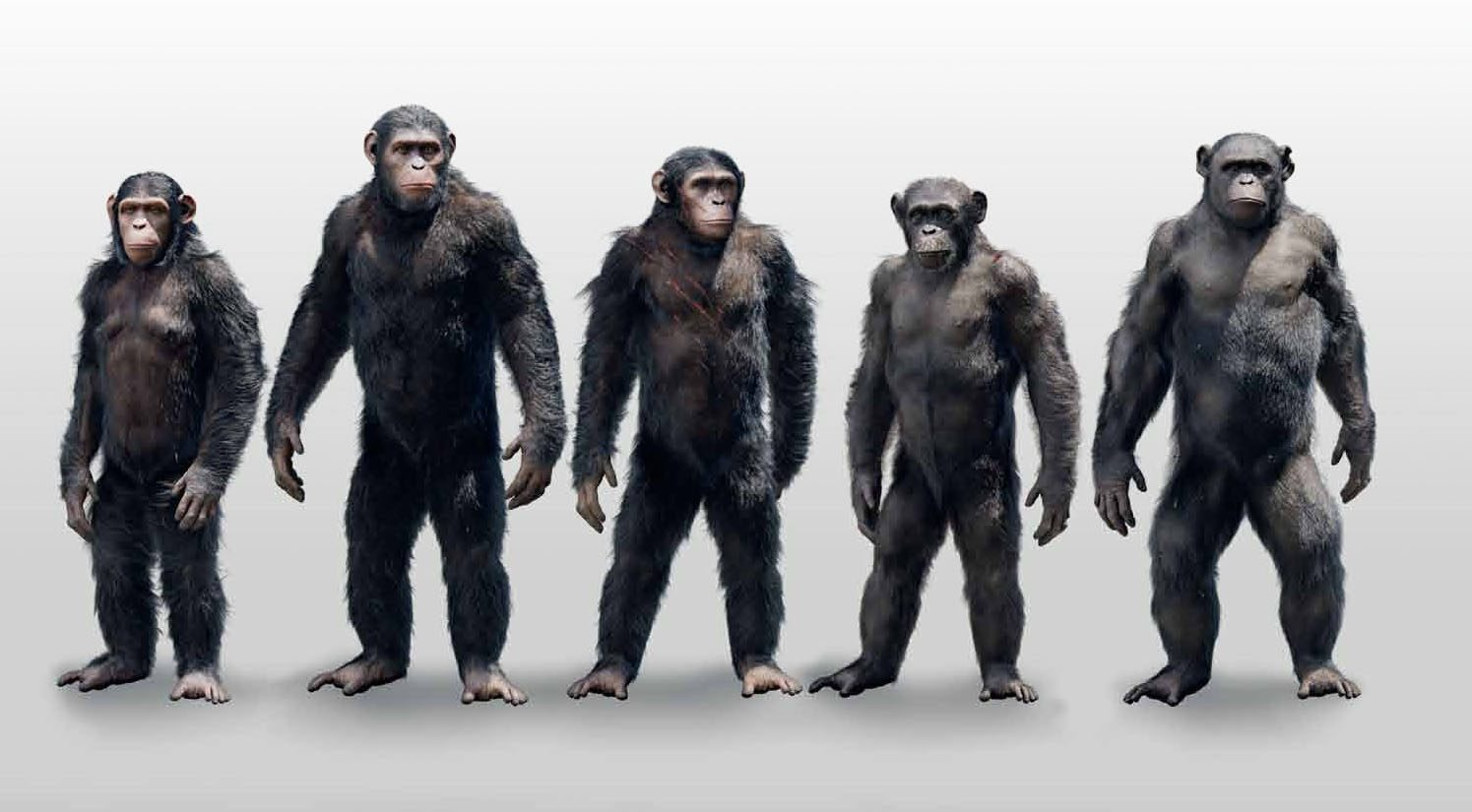 concept art dawn of the planet of the apes