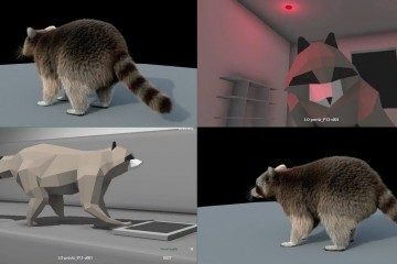 racoon dance party