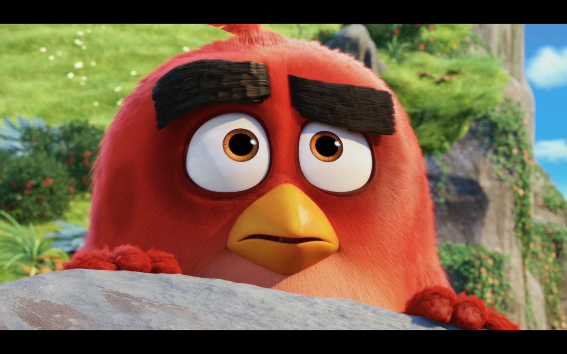 Angry Bird Official Trailer  2