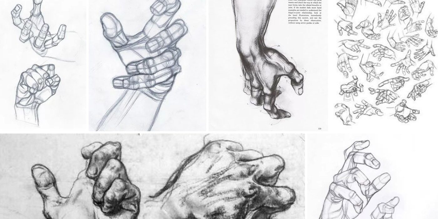 Character Design Collection: Hands Anatomy