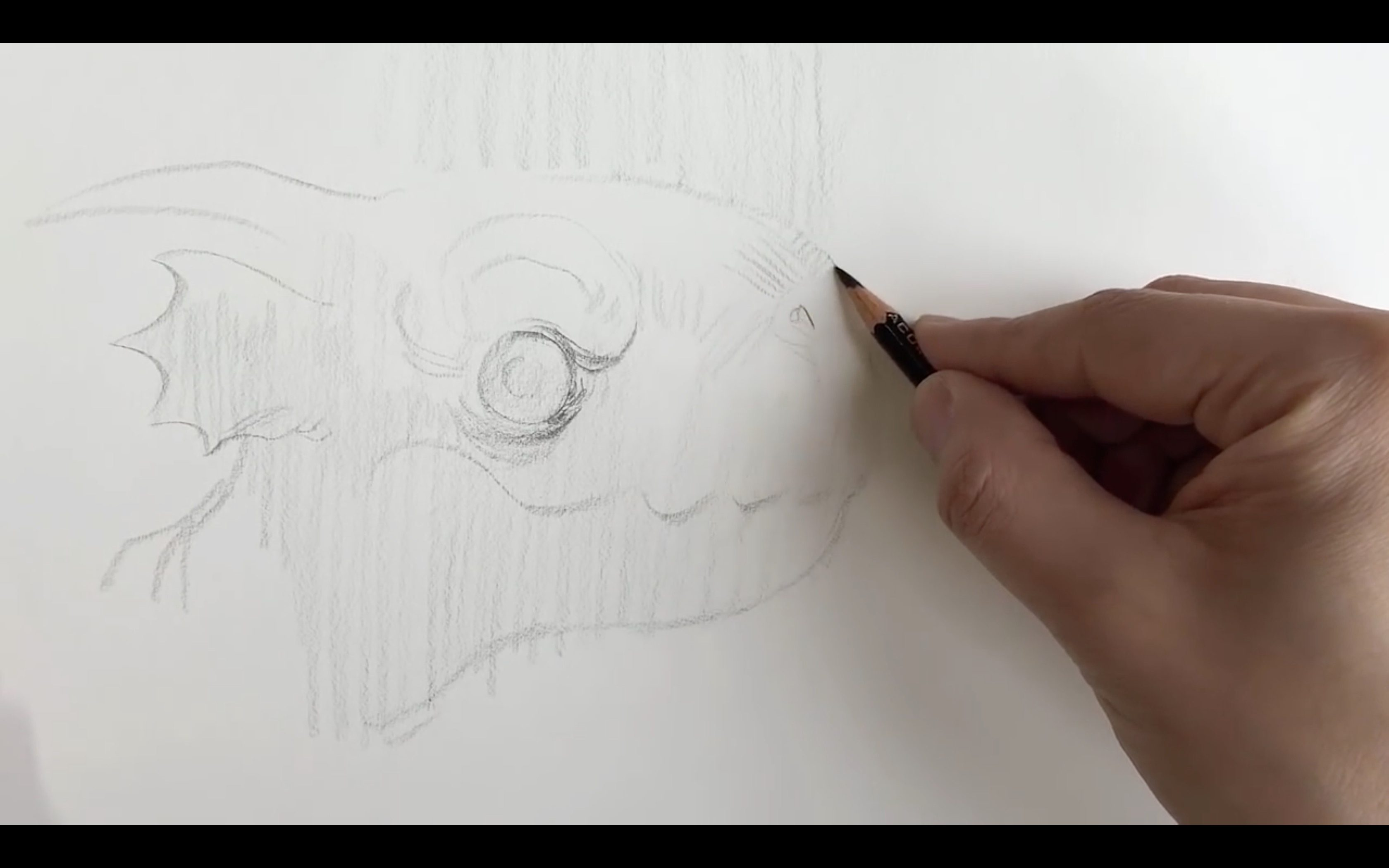 Pencil drawing techniques with bobby chiu