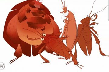 Sergio Pablo : Drawing Roaches