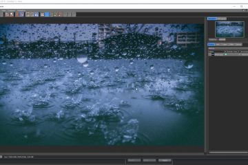 Rain Scene